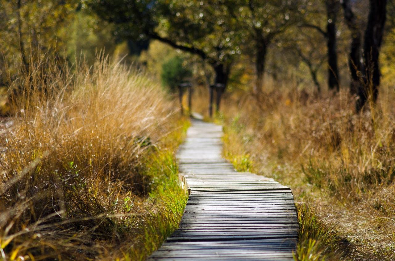 chemin objectif nature calme